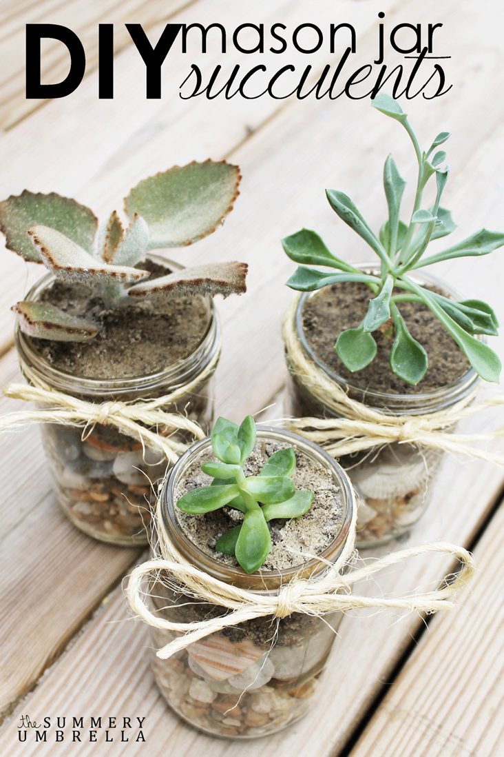 DIY mason jar succulents are incredibly easy to make. All you need is a few simple supplies, and you too can have a beautiful arrangement in minutes!