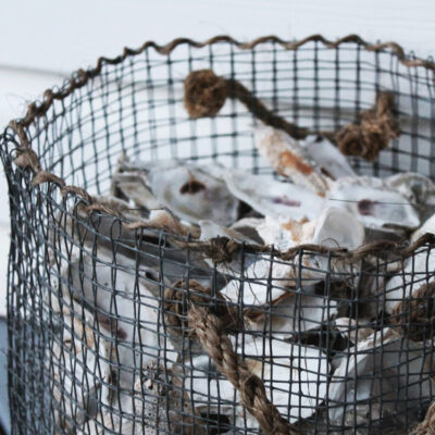 How to Make a DIY Wire Mesh Basket