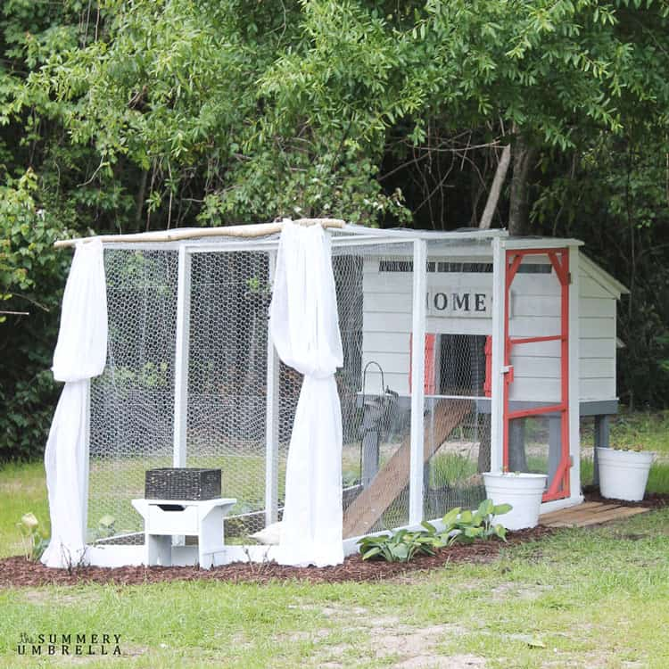 How to Create a Pretty and Functional Chicken Coop