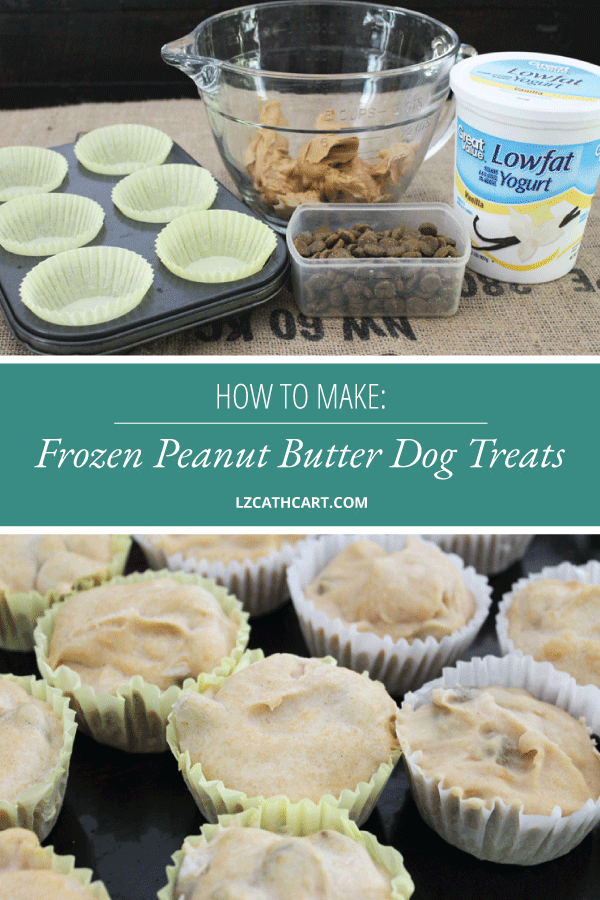 Dogs need a delightfully, pleasant treat during the summer time just as much as we do. Try out these yummy peanut butter dog treats! #3IngredientPeanutButterDogTreats #dogtreats #peanutbutterdogtreats #frozendogtreats #diydogtreats #homemadedogtreats #thesummeryumbrella #lzcathcart