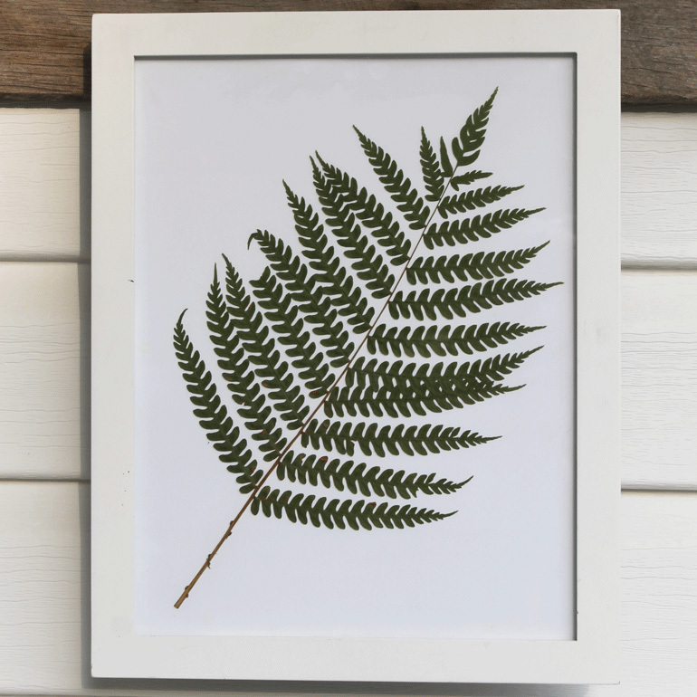 diy fern art