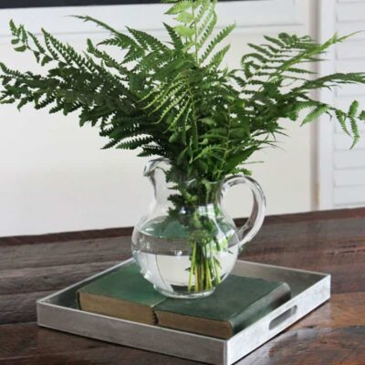 Sweet and Simple Fern Spring Centerpiece