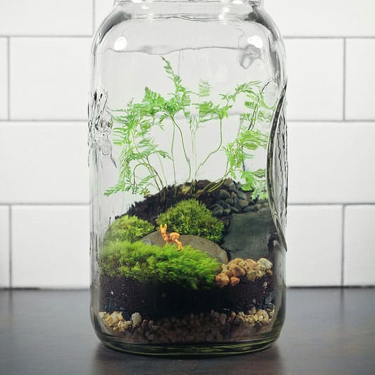 Creative Uses for Mason Jars in Your Home