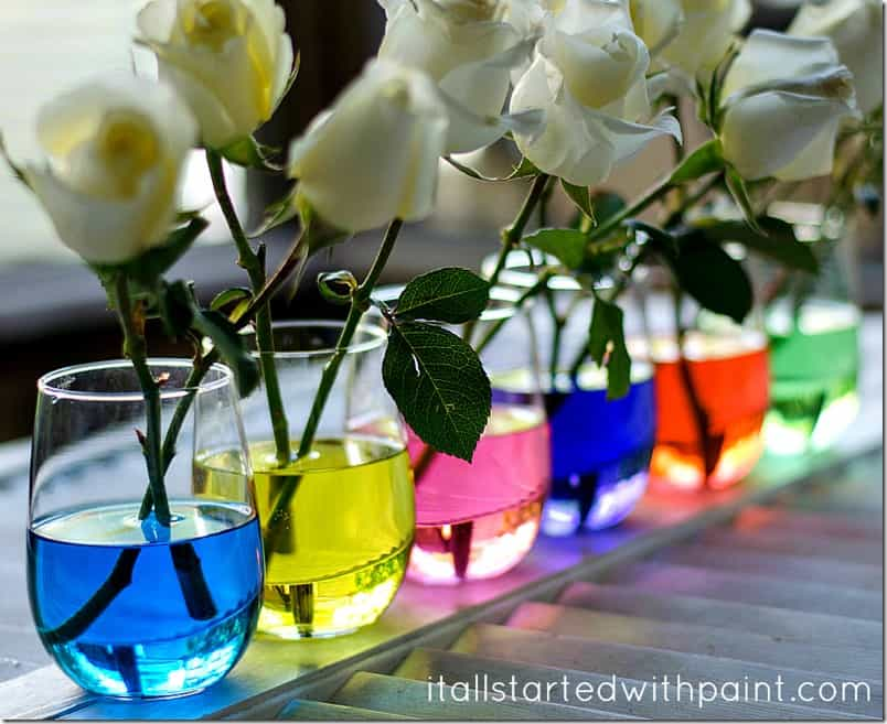 These gorgeous and colorful summer centerpieces will have you begging for more! Super simple to make, AND perfect for entertaining and events. MUST SEE!