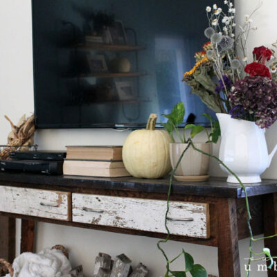 My Rustic Fall Living Room Decorating Ideas