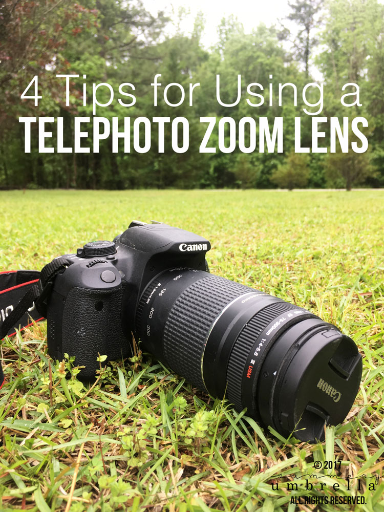 Here are my top 4 Tips for Using a Telephoto Zoom Lens. Thankfully it isn't as hard as it looks, and with a little practice you'll have it mastered too!
