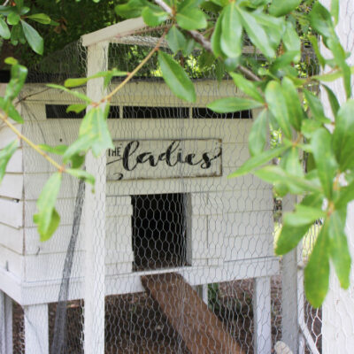 The Ladies DIY Chicken Coop Sign