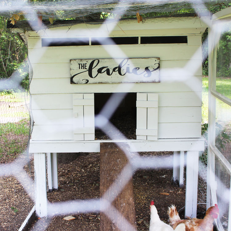 rustic DIY chicken coop sign
