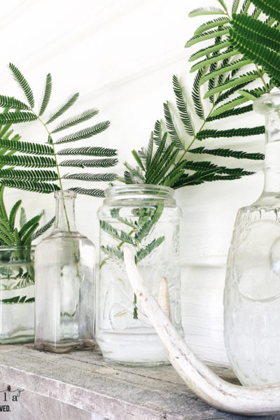 How to use indoor plants to decorate