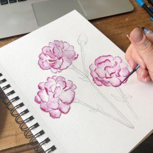 carnation sketch