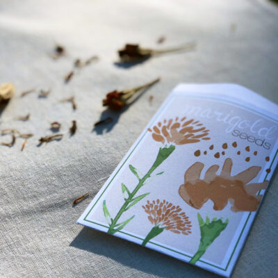 Make Your Own Unique DIY Marigold Seed Packet (Terrific Gift Idea!)