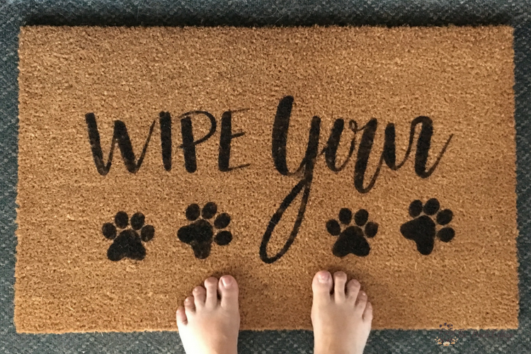 Easily Make This Wipe Your Paws Diy Personalized Doormat