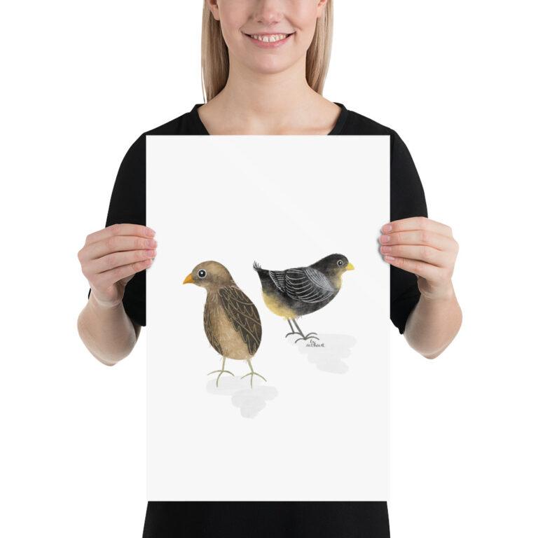 baby chicks art print
