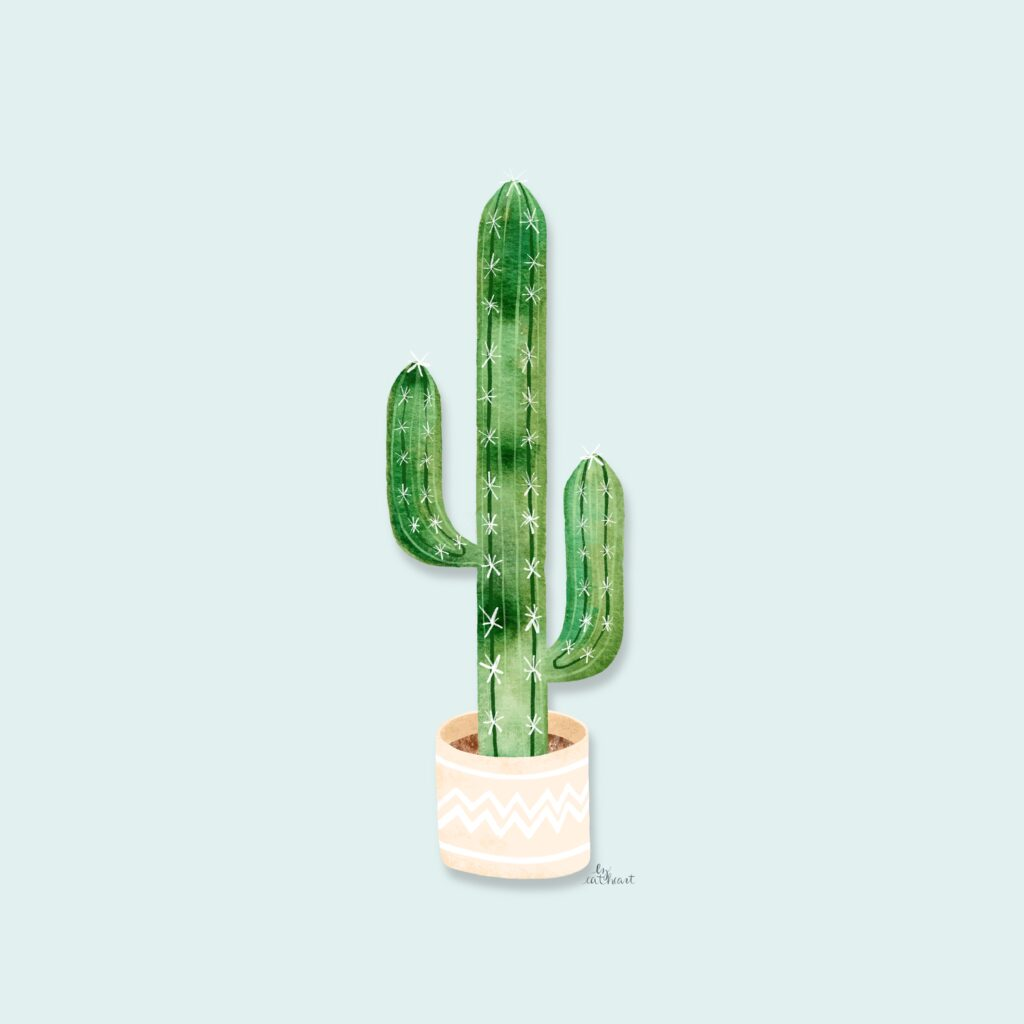 potted cactus illustration