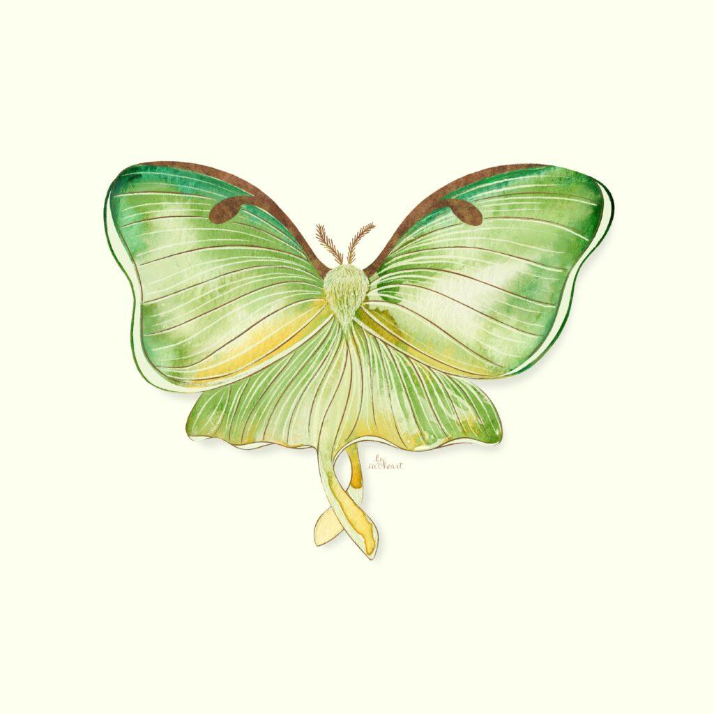 green moth illustration