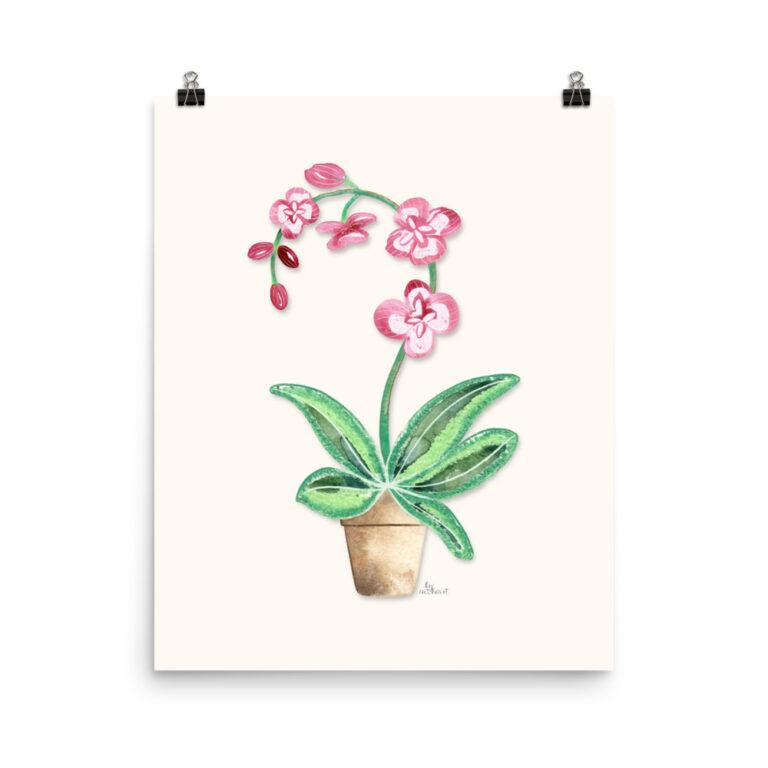 orchid pot print