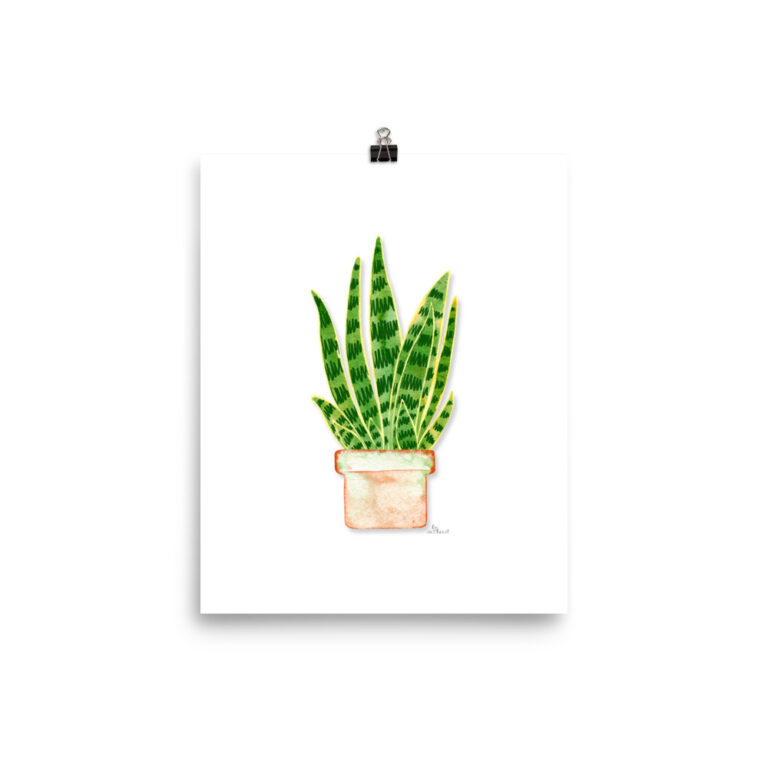 potted snake plant art print