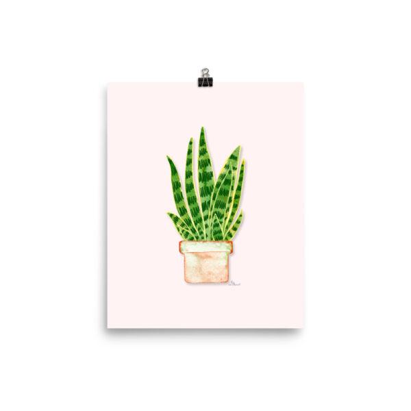 snake plant poster